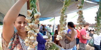 9th Annual Garlic Harvest Festival Photo Album